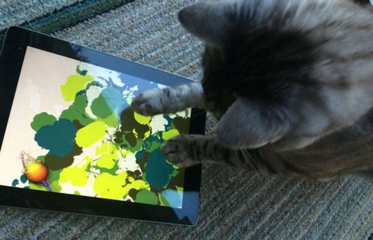 Sembra che i gatti amino i videogames, ma non tutti