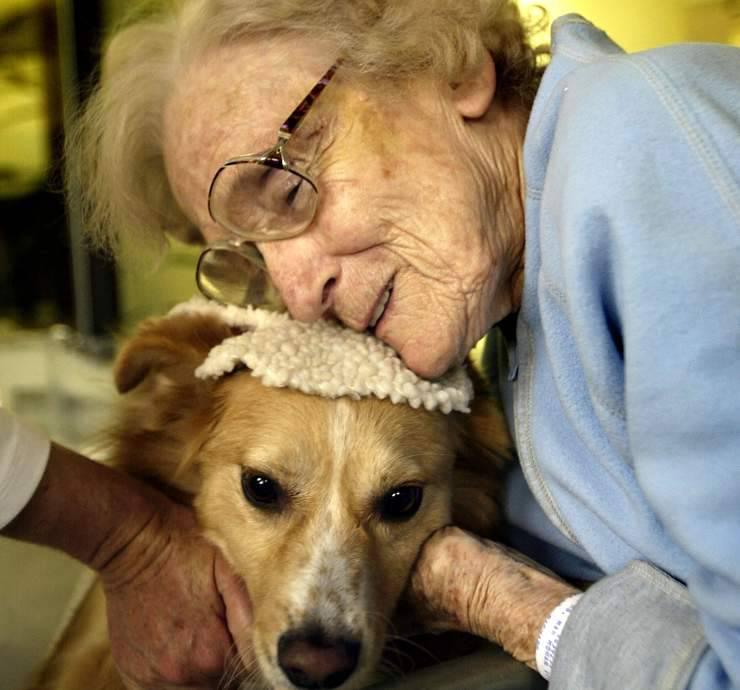 giornata mondiale del cane bene comune