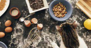 Biscotti per gatti all'erba gatta