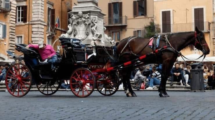 Botticelle a Roma