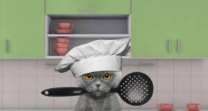 Ricette per gatti a base di pollo.