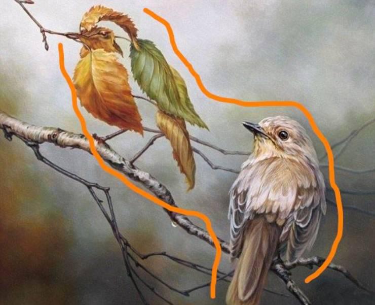 illusione ottica uccelli