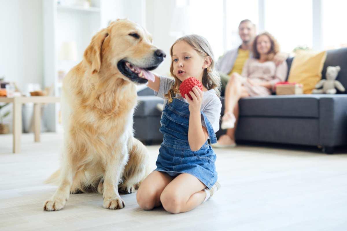 insegnare al cane i nomi degli oggetti