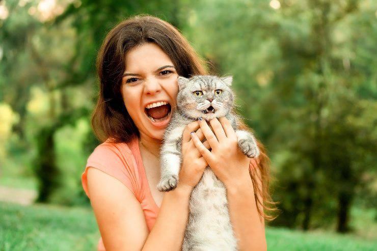 le cose che il gatto odia dell'uomo