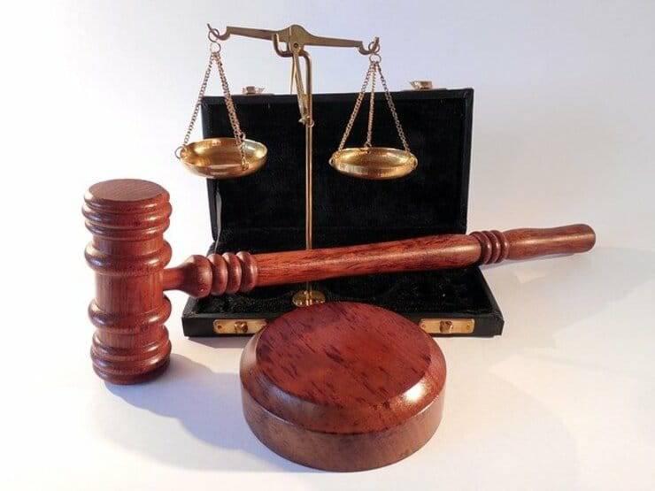 Cosa dice la legge 189 del 2004 sul maltrattamento  degli animali