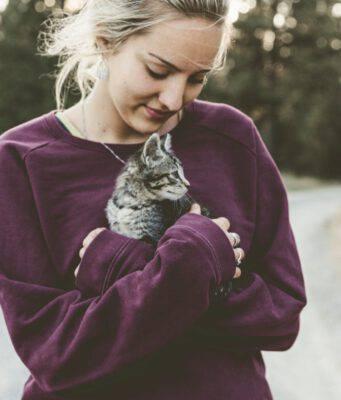 Come trovare un cat sitter perfetto per il nostro micio?