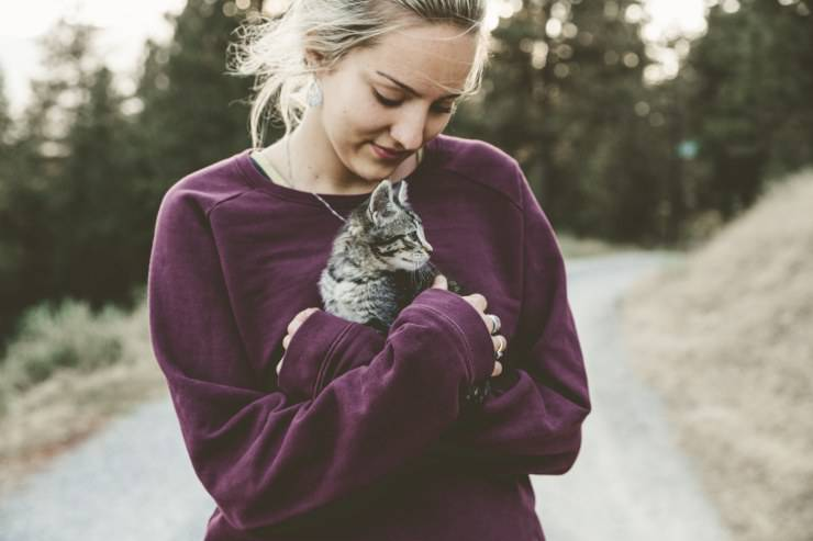 Responsabilità cat sitter