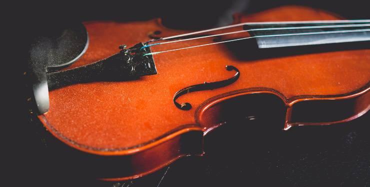 Sagoma violino