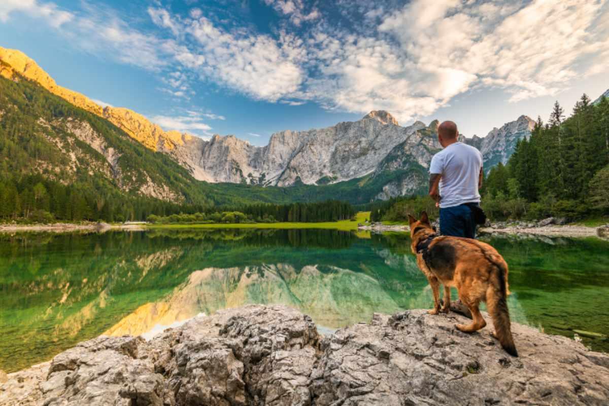 portare il cane in montagna