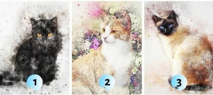 Test gatti subconscio