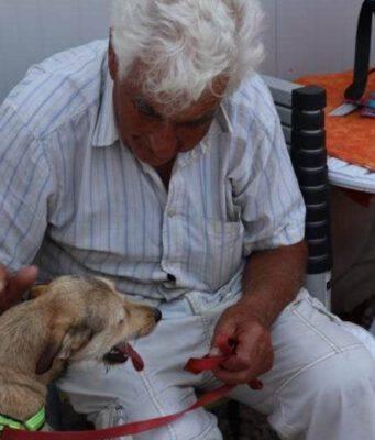 cane olbia padrone