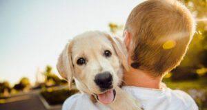 cane in braccio padrone