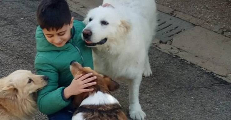 peppino dona soldi canile