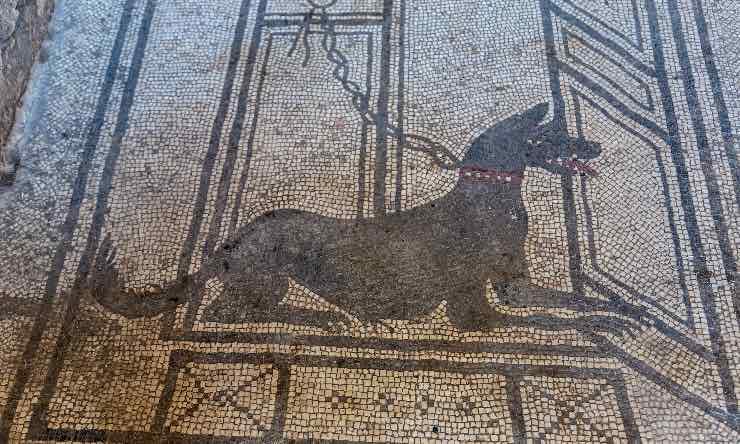 Mosaico con cane