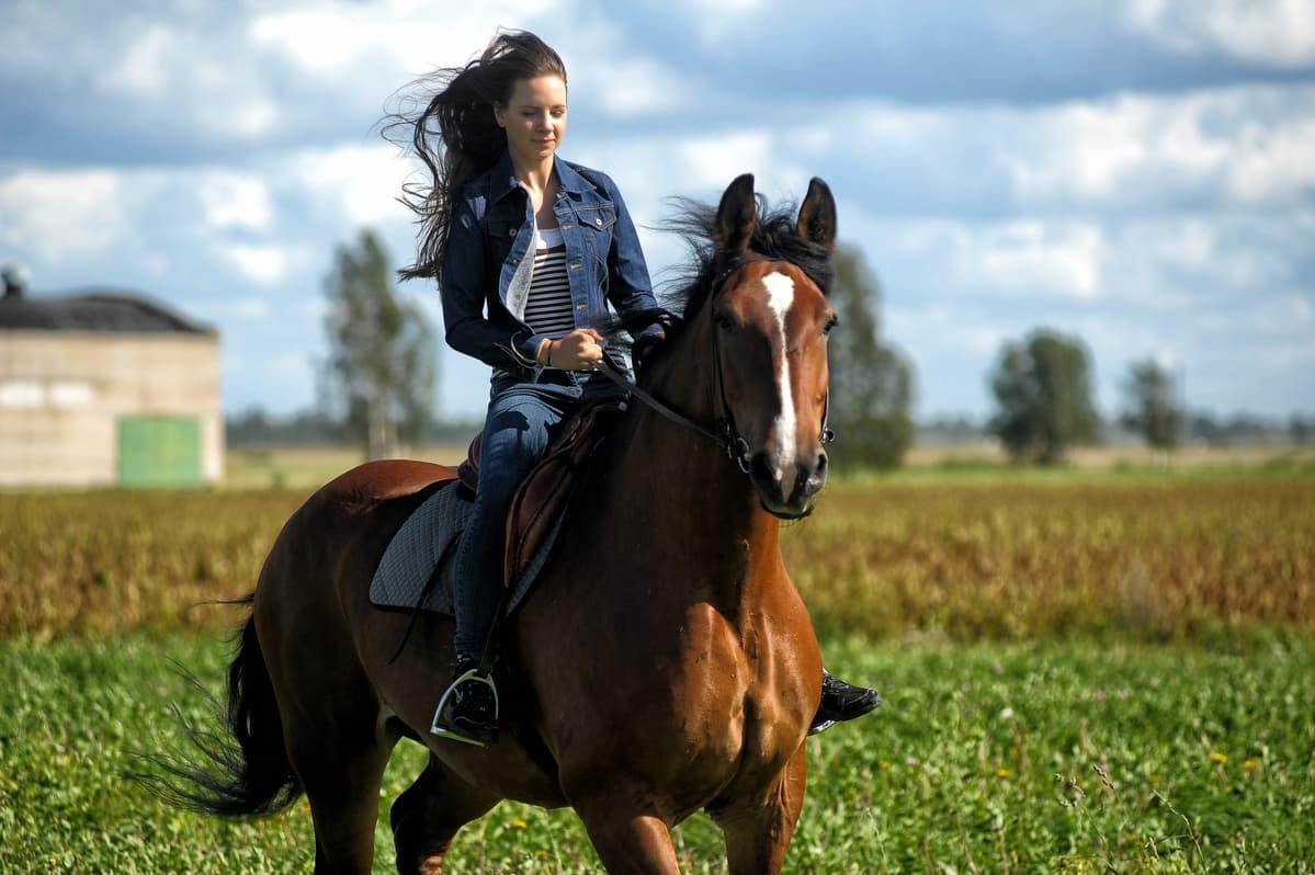 Caduta da cavallo (Foto Adobe Stock)