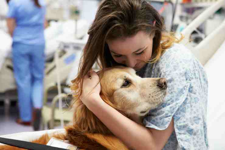 Pet therapy in ospedale (Foto Adobestock)