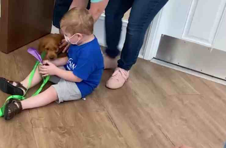 Bambino malato di tumore riceve in regalo un Goldendoodle (screenshot video Facebook)
