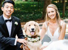 Il cane con gli sposi (Foto Instagram)