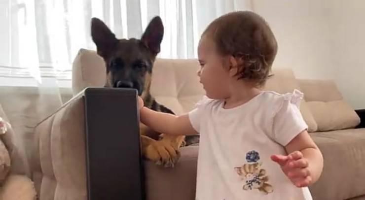 Vicinanza e altruismo (Foto video)
