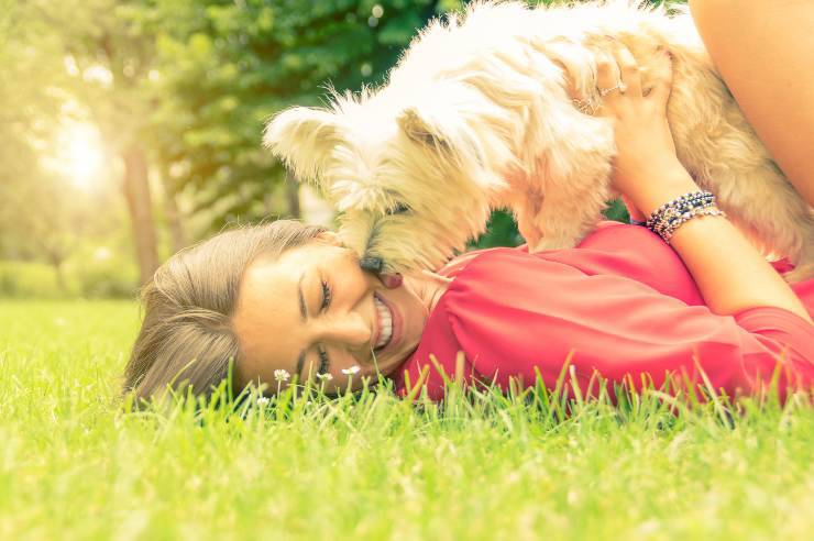 Come essere un buon padrone per il cane