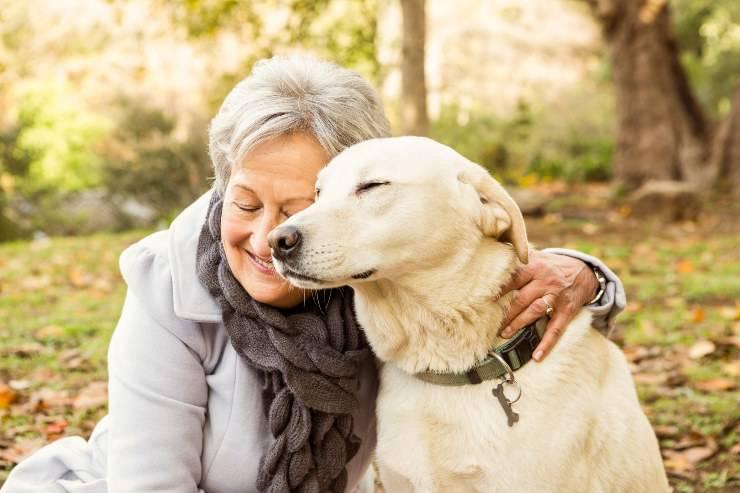 cane e anziano