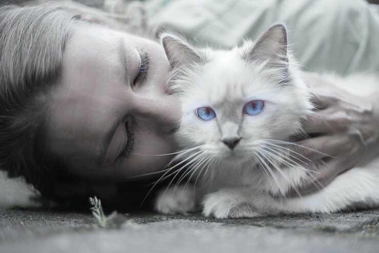 bacio gatto