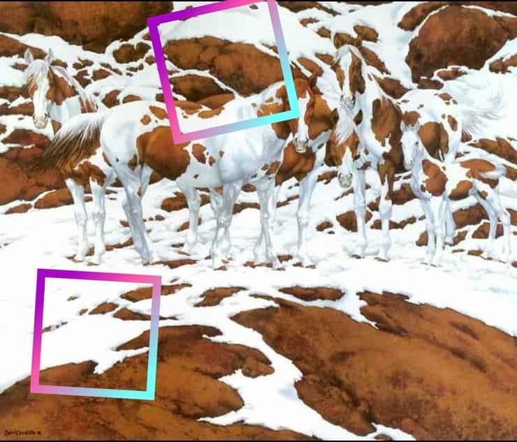 Soluzione Test visivo:  Quanti cavalli riuscite a vedere nel dipinto