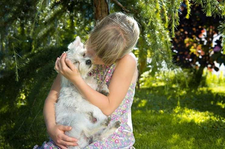 Bambino abbraccia il cane