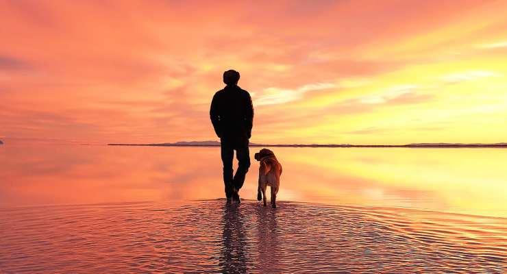 Cane e padrone guardano il tramonto (Foto Pixabay)
