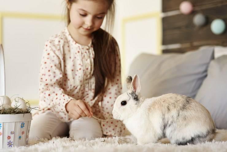 dormire con il coniglio a letto