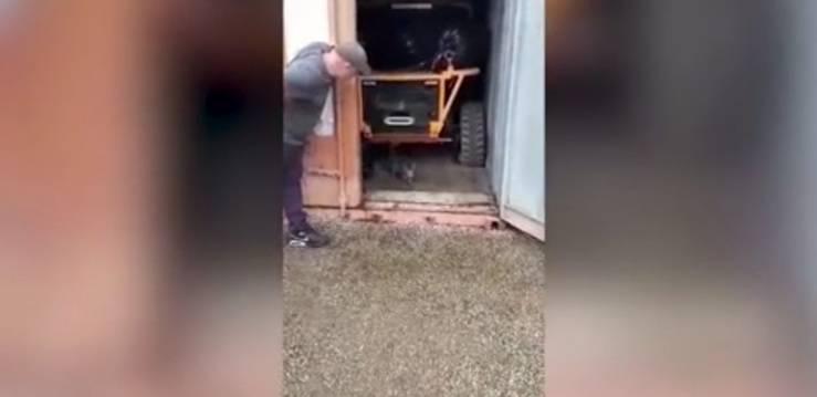 Gatto intrappolato nel container per due mesi