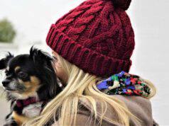 Il cane e la padrona (Foto Pixabay)