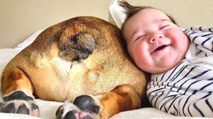 cane bambino neonato