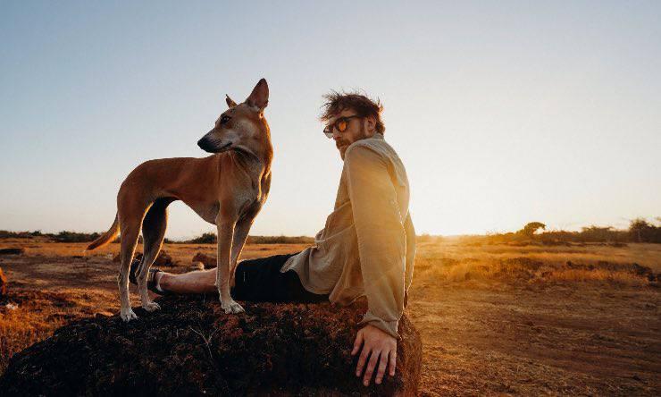 Cane e padrone al tramonto