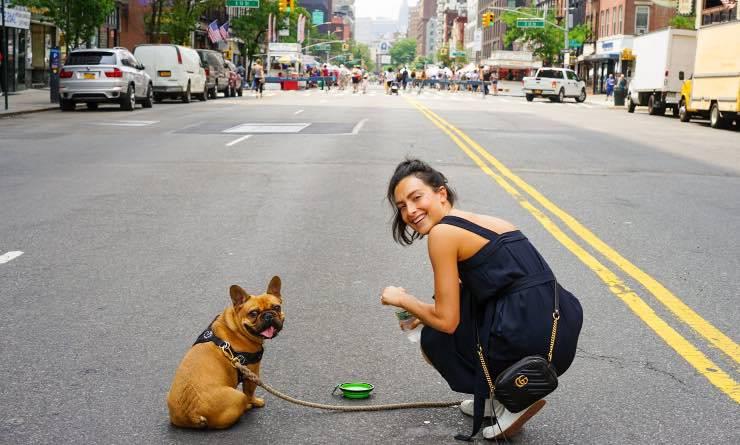Cane con padrone su di una strada