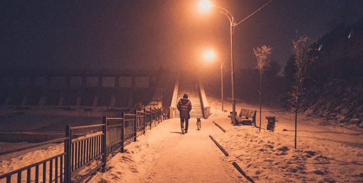 Cane che passeggia con il padrone nella notte