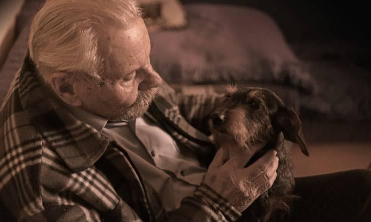 bassotto con padrone anziano