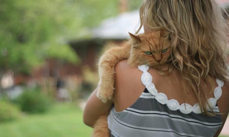 Gatto in braccio alla sua proprietaria