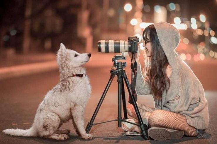fotografia cane cucciolo ragazza