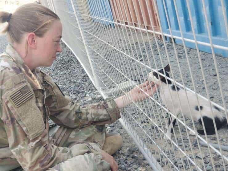 Il sergente Etter con uno dei gatti