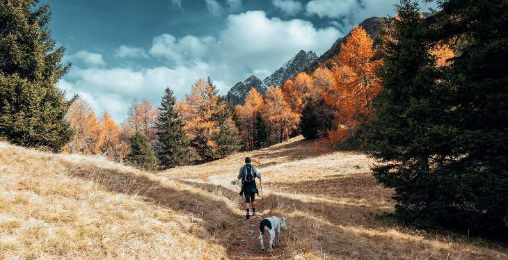 Cane ch e fa trekking con padrone