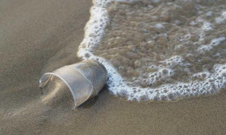 Il bicchiere gettato in mare (Foto Pixabay)