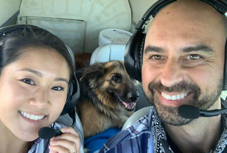 pilota aereo cani maltrattati