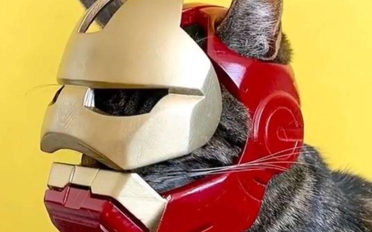 iron man gatti elmo