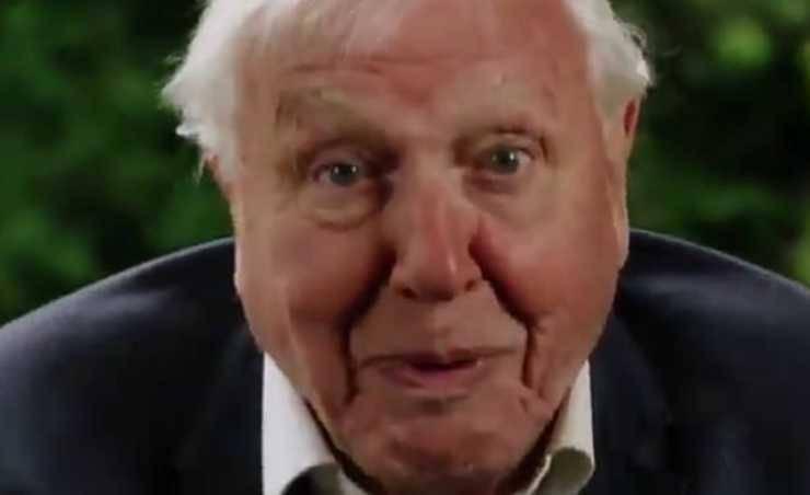 David Attenborough (Foto video)