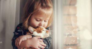 Il gatto graffia i bambini