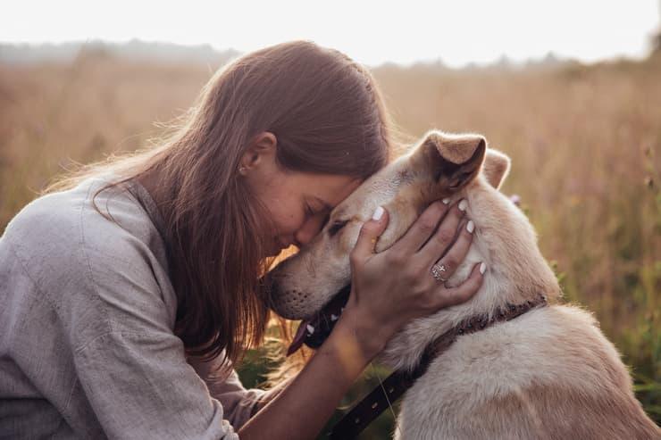 Ode al cane di Pablo Neruda (Foto Adobe Stock)