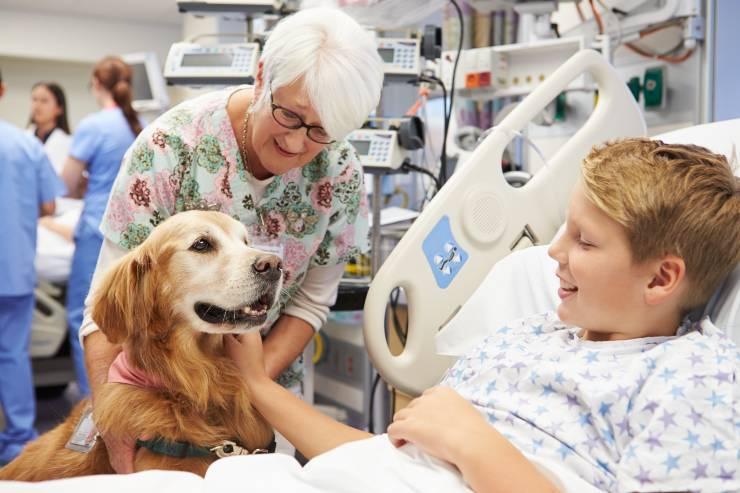 Cane e bambino in ospedale