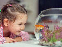 Bambini e pesci rossi