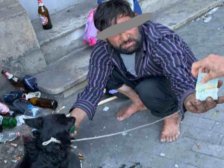 Nerino, il cane picchiato e venduto per 5 euro (foto Facebook)
